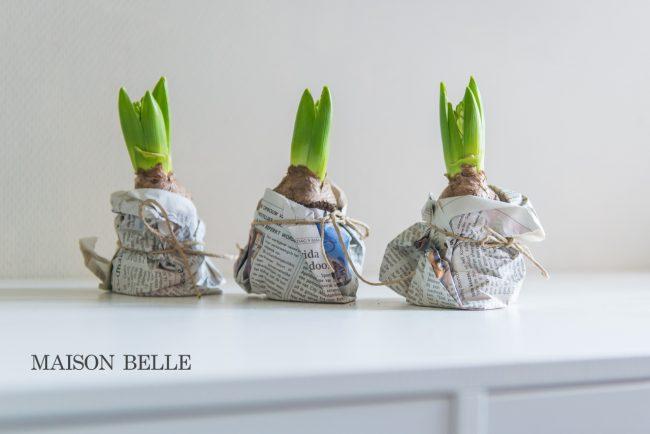diy interieurblog lente bloembollen